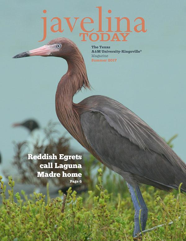 Javelina Today volume 7.2