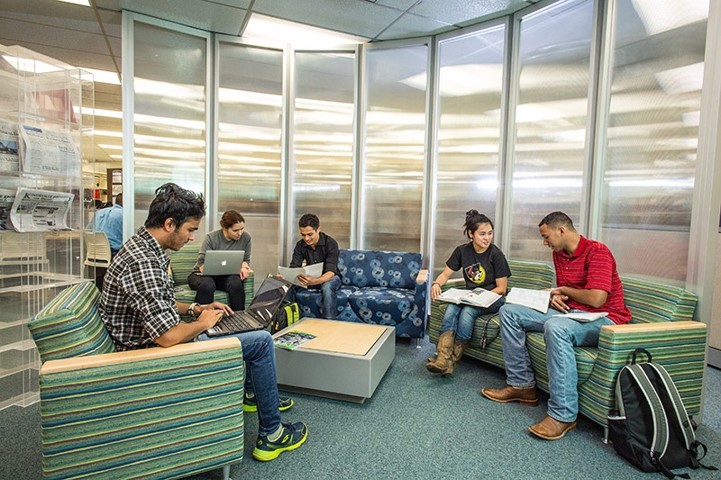 Students study in Jernigan Library.