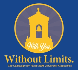 Without You, Without Limits